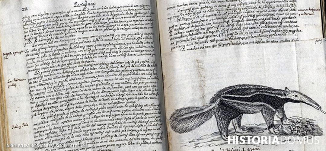 Jesuit Sources | Jesuit Archives | ARSI | Archivum Romanum Societatis Iesu, Rome